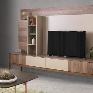 Form TV Unit (with a back stand).